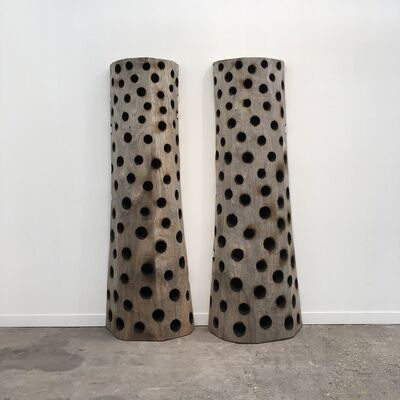 David Nash, 'Two Holed Wall Cedars ', 2019