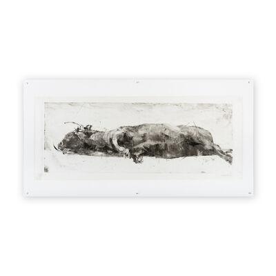Gonzalo Borondo, 'Insurrecta XVIII (Toro)', 2020