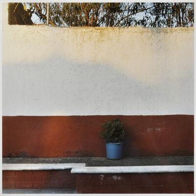 Amy Blakemore, 'Planter', 2012
