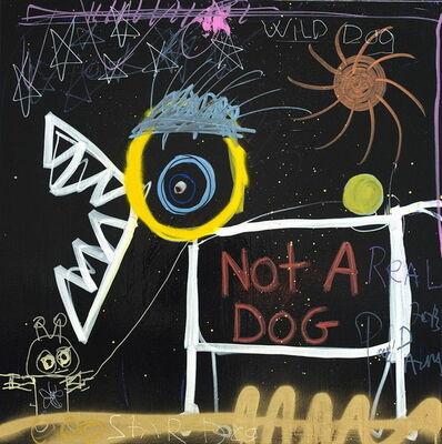 Poul Pava, 'Wild Dog-Not a Dog', 2019