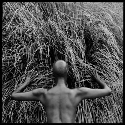 Javiera Estrada, 'Magic Awaits', 2014