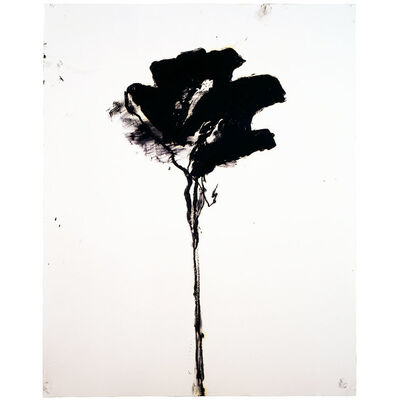 Robert Baribeau, 'Untitled (000495) ', 2004