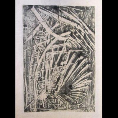 Frank Fidler, 'Ferns'