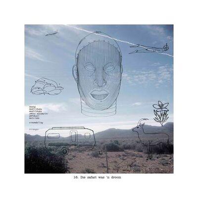 Lien Botha, 'Die Safari was 'n Droom', 2003