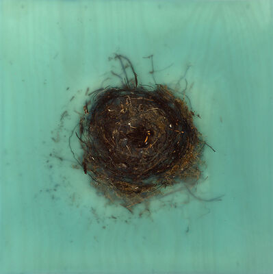 Mayme Kratz, 'Knot 318', 2017