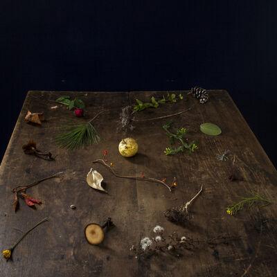 Cig Harvey, 'Fall Table ', 2013