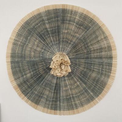 Ann Hamilton, 'ciliary (#14)', 2010