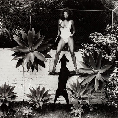 Helmut Newton, 'Raquel Welch in her backyard, Beverly Hills', 1981