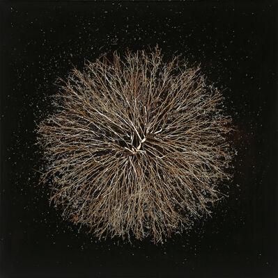 Mayme Kratz, 'Dust to Dust 1', 2016