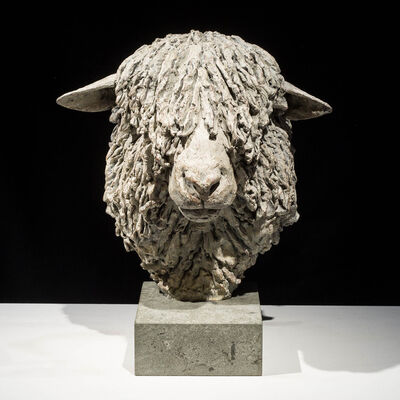 Hamish Mackie, 'Cotswold Ram Head ', 2015