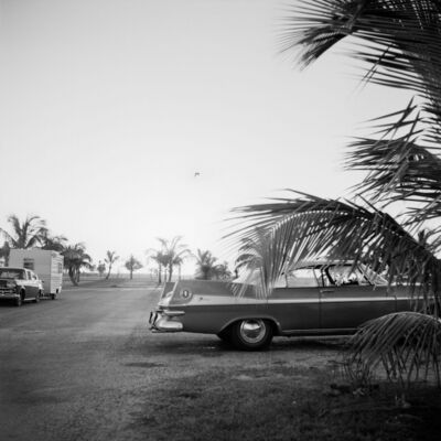 Vivian Maier, '0129829 - x, n.d., Car with Palm Tree', Printed 2017