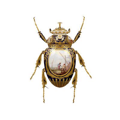 Magnus Gjoen, 'Sévres Goliathus Scarabaeidae ', 2018
