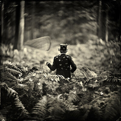 Alex Timmermans, 'Hide and Seek', 2019
