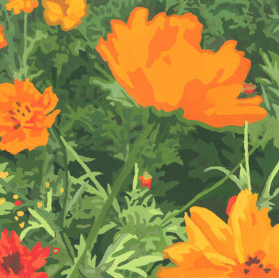 James Oliver (1972), 'Wildflower Composition (California Poppy#14)'