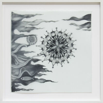 Andrea Dezsö, 'Night Drawings: Stars', 2013