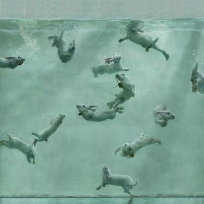 Zhou Hongbin, 'Aquarium 23', 2014