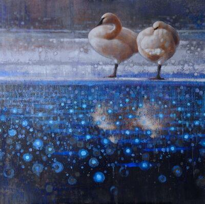 Ewoud De Groot, 'Resting on Ice #2  (Trumpeter Swans)'