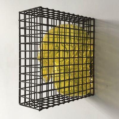 Marinke van Zandwijk, 'Caged bubble', 2017