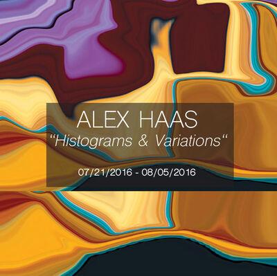 Alex Haas - Histograms & Variations, installation view