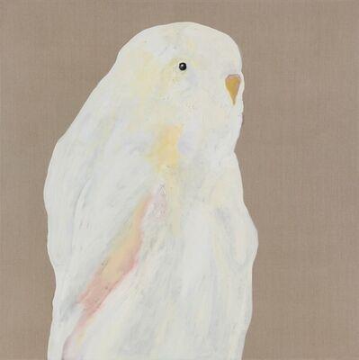 Darren McDonald, 'Albino', 2014