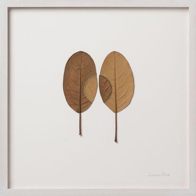 Susanna Bauer, 'Trans-plant 31', 2020