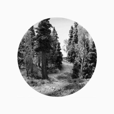 Bill Finger, 'Trailhead - Day', 2015