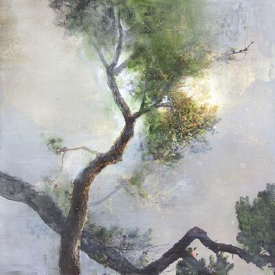 Steven Nederveen, 'Tree in the Mist #2', 2019