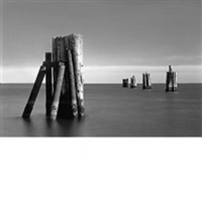 Daniel Jones, 'Ferry Pilings II'