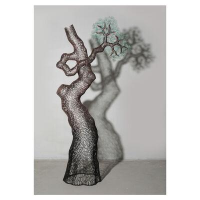 Gilrae LEE, 'Pine Tree-1', 2018