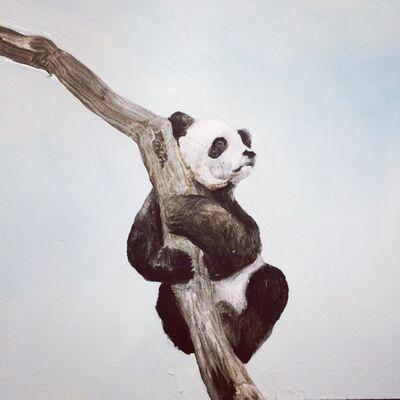Kevin Earl Taylor, 'Panda Study', 2014