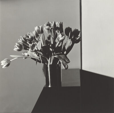 Robert Mapplethorpe, 'Tulips', 1978