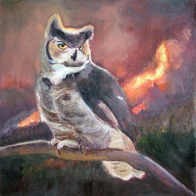 David Molesky, 'Horned Owl', 2014