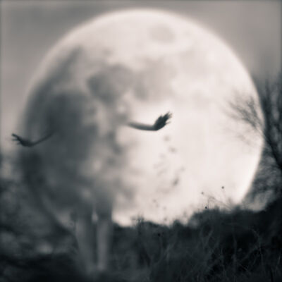 Tami Bone, 'Girl in the Moon', 2014