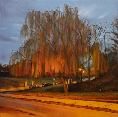 Daina Higgins, 'Willow Tree in Gorgas Park (Pandemic Painting)', 2020