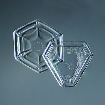 Douglas Levere, 'Snowflake 2014.02.09.005', 2014