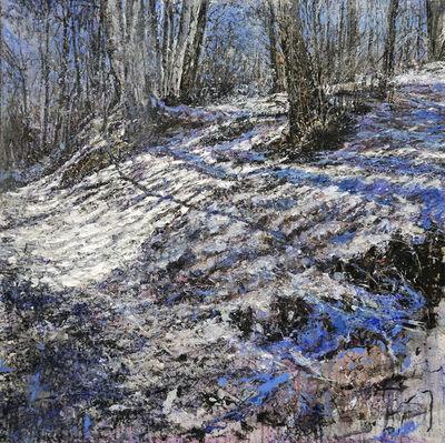 Raffaele Minotto, 'Luce dell'inverno', 2016