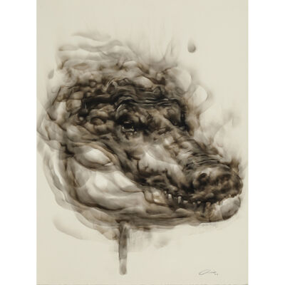 Diane Victor, 'Crocodile', 2018