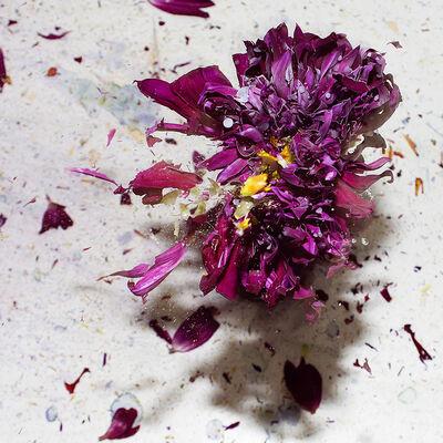 Sharon Neel-Bagley, 'Boiling Crash Number 7', 2015