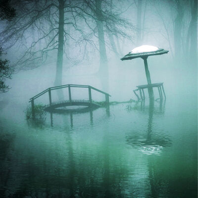 Dan Goldman, 'Deluge, Rhinebeck, NY', 2020