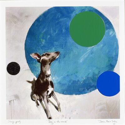 James Hart Dyke, 'Dog in the Round', 2011