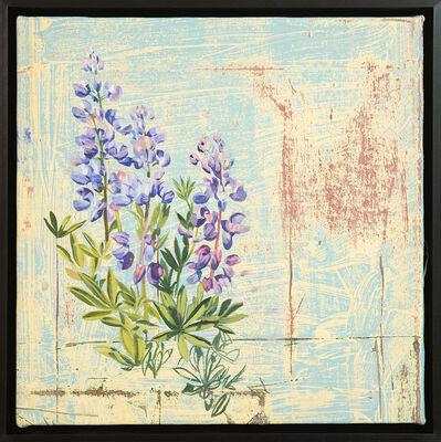 Mary Iverson, 'Alpine Lupine', 2018