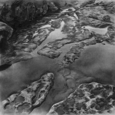Robin Cole, 'Intertidal', 2010