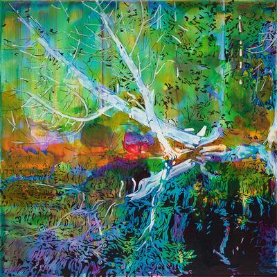 Steve Driscoll, 'Below the Cedars', 2020