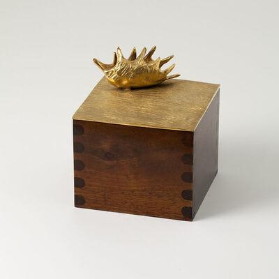 """Aldus, '""""Dionaea"""" Box', 2013"""