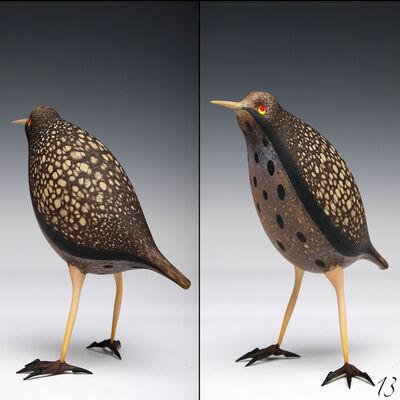 Shane Fero, 'Bird #13', 2013