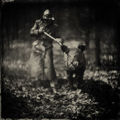 Alex Timmermans, 'The Truffle Seeker'