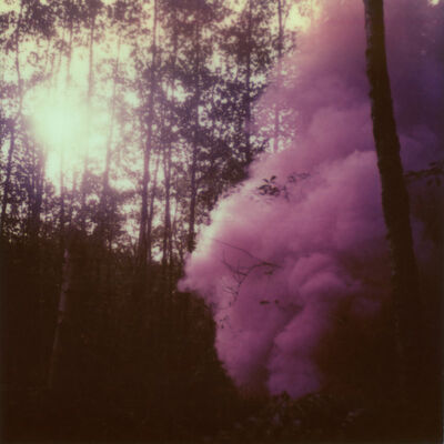 Julia Beyer, 'Into The Woods We Ran (Forever and Ever)', 2014