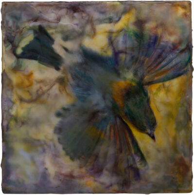 Noel Grunwaldt, 'Finch', 2018