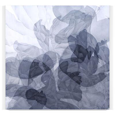 Greg Murr, 'Fabric or Gravity Study 15k', 2020