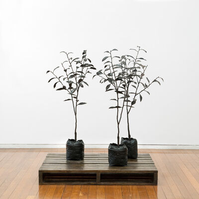 Michael Parekowhai, 'The Moment of Cubism (Pallet) & Nude Descending a Staircase (Tree)', 2010